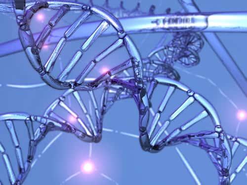 Estrutura e Duplicação do DNA