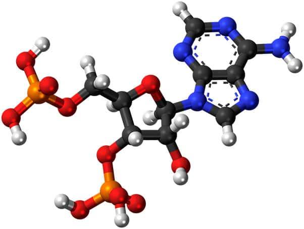 Ligações entre átomos e entre moléculas