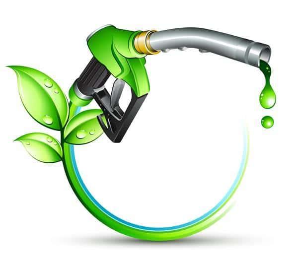 Gasolina de Capim