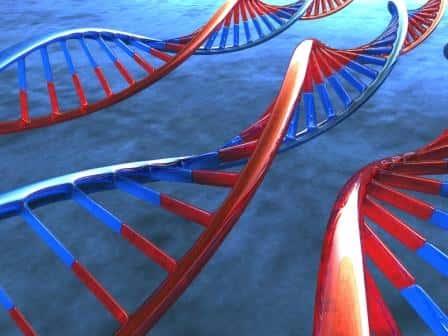 Conceitos gerais em genética