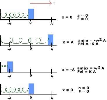 Dinâmica no MHS (Movimento Harmônico Simples)