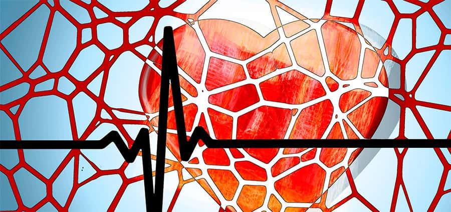 Doenças que afetam o sistema circulatório