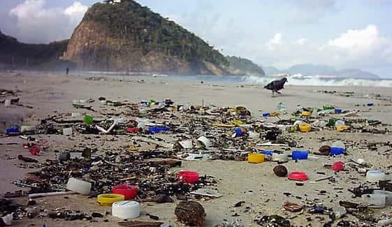 Poluição dos Oceanos