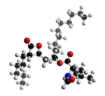 Os aminoácidos e suas funções no organismo!