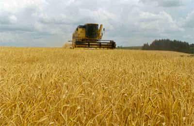 Fluxos de exportação de mercadorias agrícolas no mundo