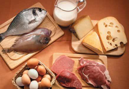 Doenças causadas pelo excesso de proteína