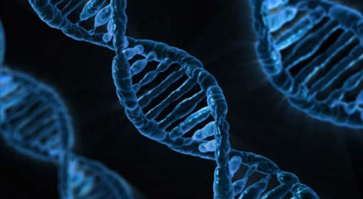 As causas genéticas das mutações