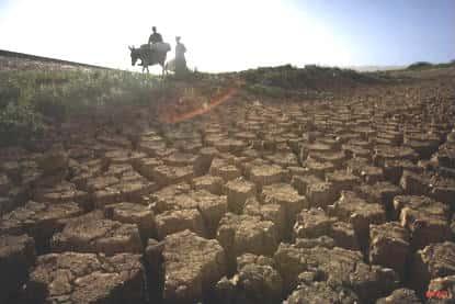 Desertificação Brasileira