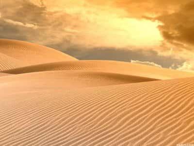 Desertos e Semidesertos