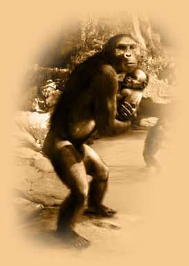 Elo Perdido (O Homem e o Macaco)