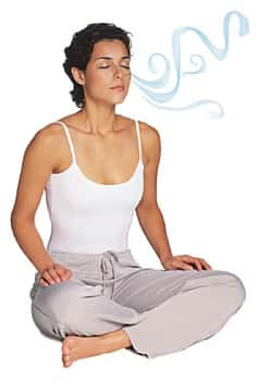 A Respiração: As trocas gasosas entre o organismo e o meio