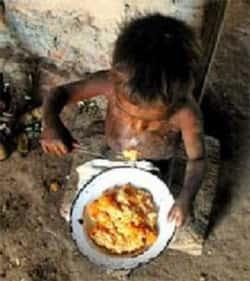 Desnutrição Infantil no Brasil
