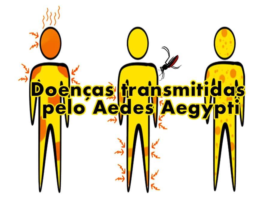 As principais doenças transmitidas pelo Aedes Aegypti