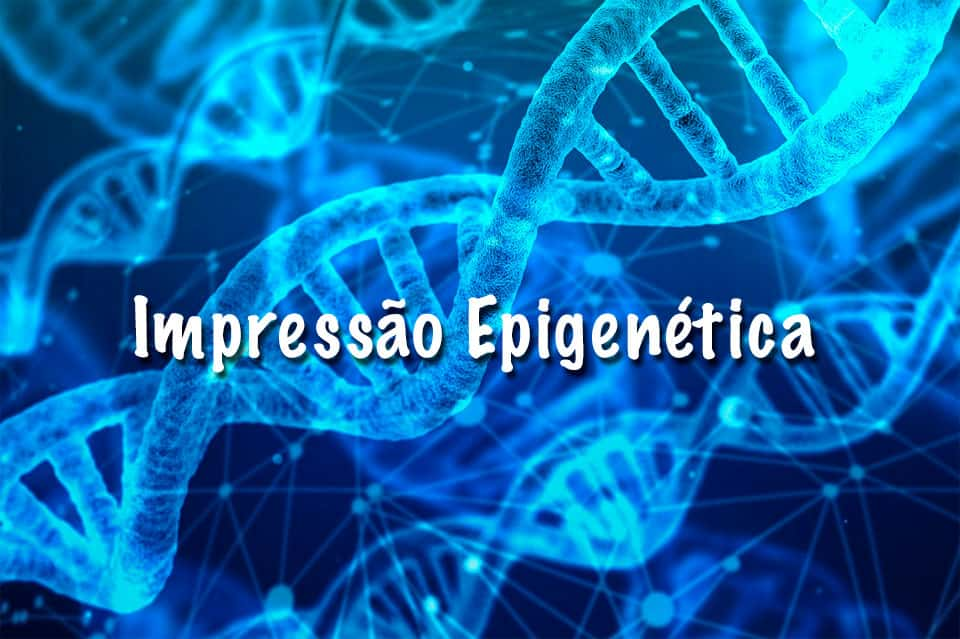 Impressão Epigenética