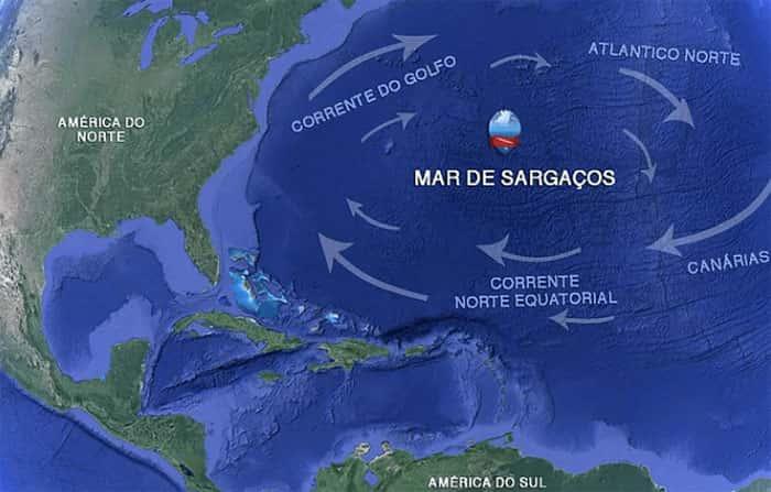 O Mar dos Sargaços - O único mar do mundo sem costa