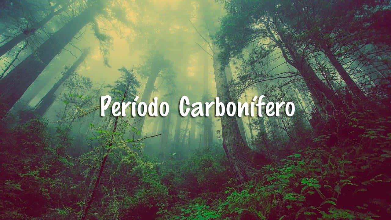 Período Carbonífero