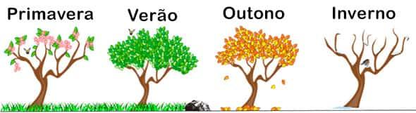 Estações do ano, primavera, verão, outono, inverno