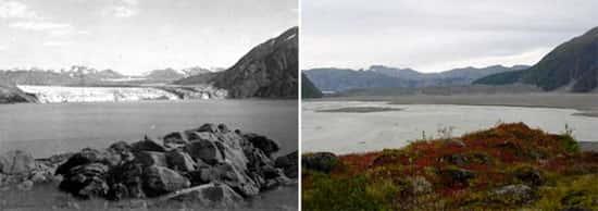 Glaciar Carroll, no Alasca
