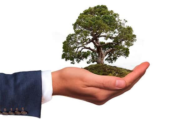 Com a Terra na mão