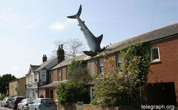 O tubarão de Headington
