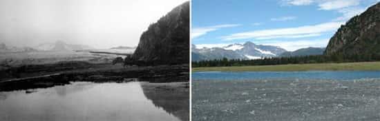 Glaciar dos Ursos, no Alasca