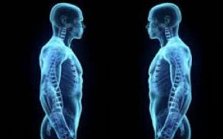 Corpo Humano Raio X