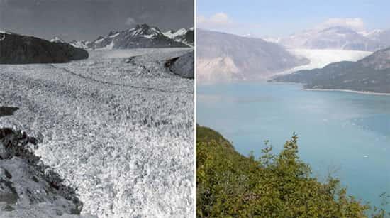Glaciar Muir, no Alasca