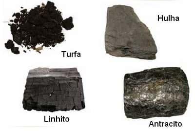 Turfa, Linhito, Hulha e Antracito
