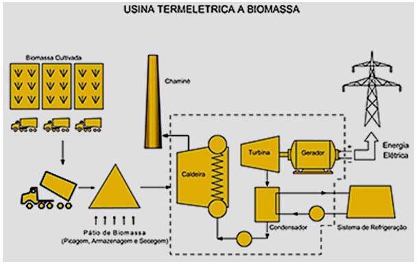 termoelétrica a biomassa